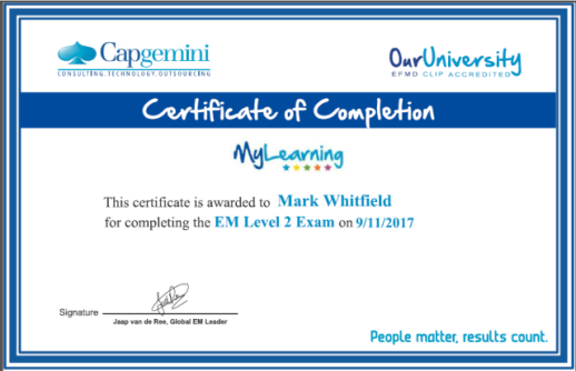 mark_whitfield_capgemini_project_manager_EM