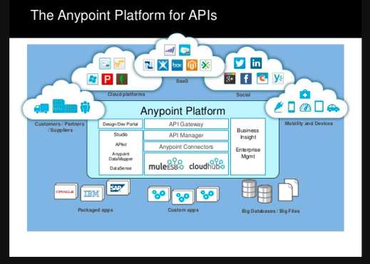 delivery_manager_anypoint_platform_mulesoft_mark_whitfield